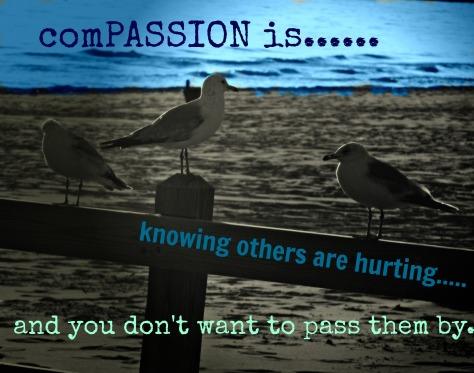 018compassion