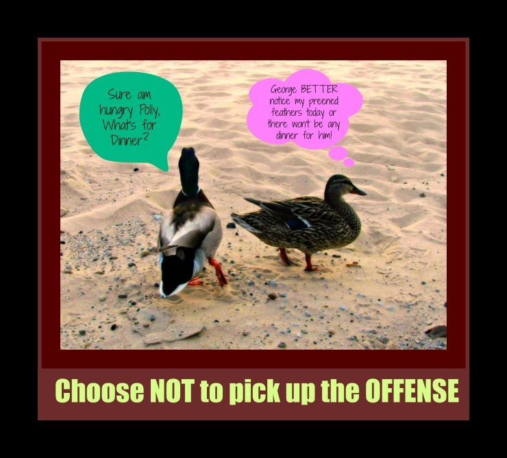 offenses2
