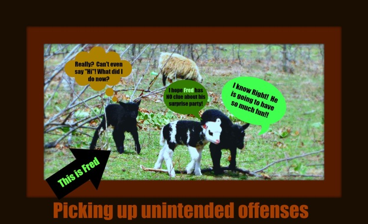 offenses3